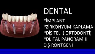 yeni_dental.fw