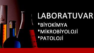 yeni_laboratuvar.fw